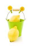 Limões na cubeta verde no branco Fotos de Stock