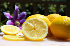 Limões na luz do sol Fotografia de Stock
