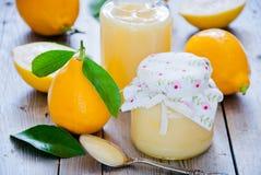 Limões orgânicos frescos Imagens de Stock