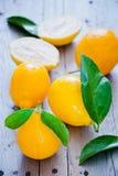 Limões orgânicos frescos Foto de Stock Royalty Free