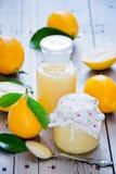 Limões orgânicos frescos Imagem de Stock Royalty Free