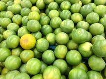 Limões verdes Fotos de Stock Royalty Free