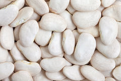 Lima Bean Royalty Free Stock Images
