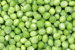 Lima-bean Royalty Free Stock Photos