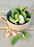 Lima bean pods. Stock Photography