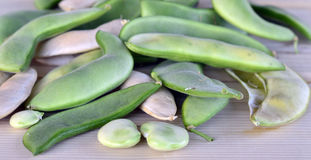 Lima bean pods. Royalty Free Stock Image