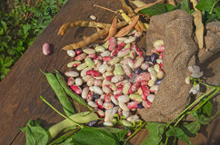 Lima beans in burlap bag Royalty Free Stock Images