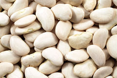 Lima Beans Close Up Photographie stock libre de droits