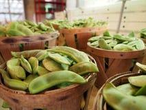 Lima Beans dans des paniers de boisseau Photos libres de droits