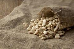 Limabohnen verbreitet von der Leinentasche Stockfotografie