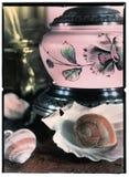 ślimaczki Obraz Stock