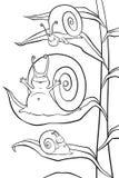 Ślimaczki w ranku Obraz Royalty Free