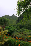 Limahuli Garden and Preserve  Stock Image