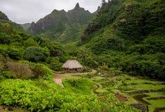Limahuli garden and preserve, kauai, hawaii Stock Photos