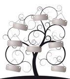 ślimakowaty etykietki drzewo Obraz Stock