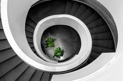 Ślimakowaty schody z drzewami Obrazy Stock