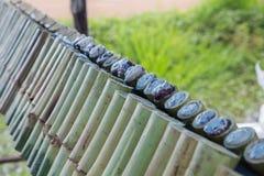limaktig grillad skarvrice för bambu Fotografering för Bildbyråer