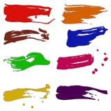 Limande di pittura Immagine Stock