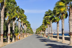 Limassol de Steeg van de Promenade Stock Foto