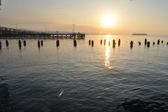 Limassol marina Royaltyfri Fotografi