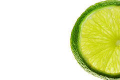Lime 1. Slice of lime on white background royalty free stock photo