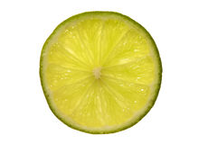 Lime. Single back-lighted lime slice on white ground Royalty Free Stock Photography