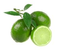 Free Lime Royalty Free Stock Images - 12957439