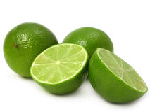 Lime. Fresh cut green lime on a plain background Royalty Free Stock Photos