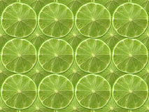 Lime. Fresh cut green lime on a plain background Royalty Free Stock Images