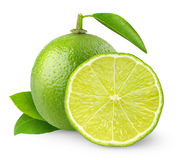 Free Lime Stock Photos - 19015613