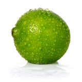 Lime. With water on white background Stock Photography