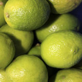 Lime. Square shot of a bunch of limes in top view Stock Images