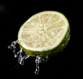 Lime. Fresh lime over white background royalty free stock photos
