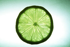 Lime. Segment lime on a gleam, it is visible fibres stock photo