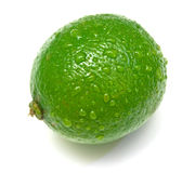 Lime. On white. Shallow DOF Stock Images