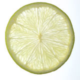 Lime. Slice of lime white background Royalty Free Stock Images
