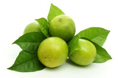 Lime. Stock Image