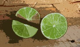 Lime, abstract art Stock Images