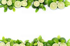 Lime And Green Leaf Frame And Border On White Background Stock Images