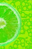 Lime background Royalty Free Stock Images
