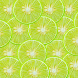 Lime background. Nature food color Royalty Free Stock Photo