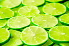Lime Background Royalty Free Stock Image