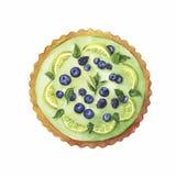 Lime and berryy cake. Hand drawn illustration. stock illustration