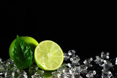 Lime on a black background Stock Image