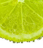 Lime with bubbles Royalty Free Stock Photo