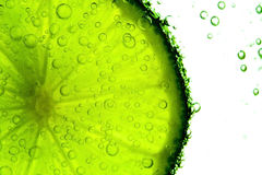 Lime with bubbles Royalty Free Stock Image