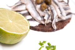 Lime and canapes of sardines with capers Stock Images
