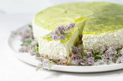 Lime cheesecake decorated with mint flowers, blurred background Royalty Free Stock Photo