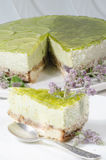Lime cheesecake decorated with mint flowers Stock Photo