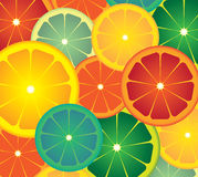 Lime Circles Stock Image